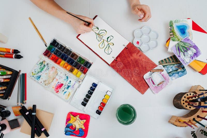 Donna che dipinge a mano una piccola pianta nel suo taccuino con acquerello fotografia stock libera da diritti