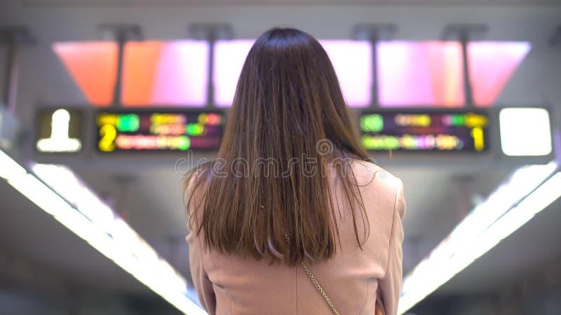 Donna che esamina grande schermo degli sport che scommettono, dipendenza di gioco, vista della parte posteriore immagini stock libere da diritti