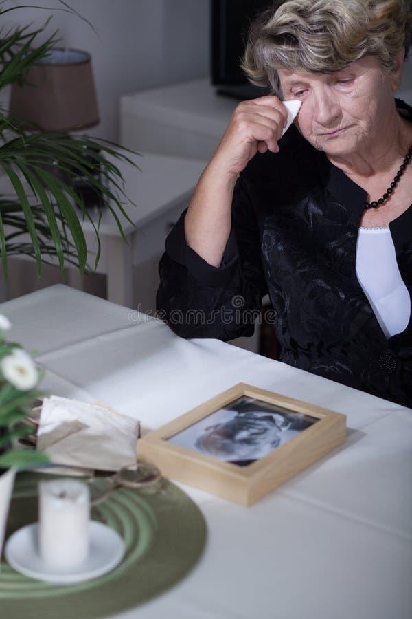 Donna che esamina la foto fotografia stock libera da diritti