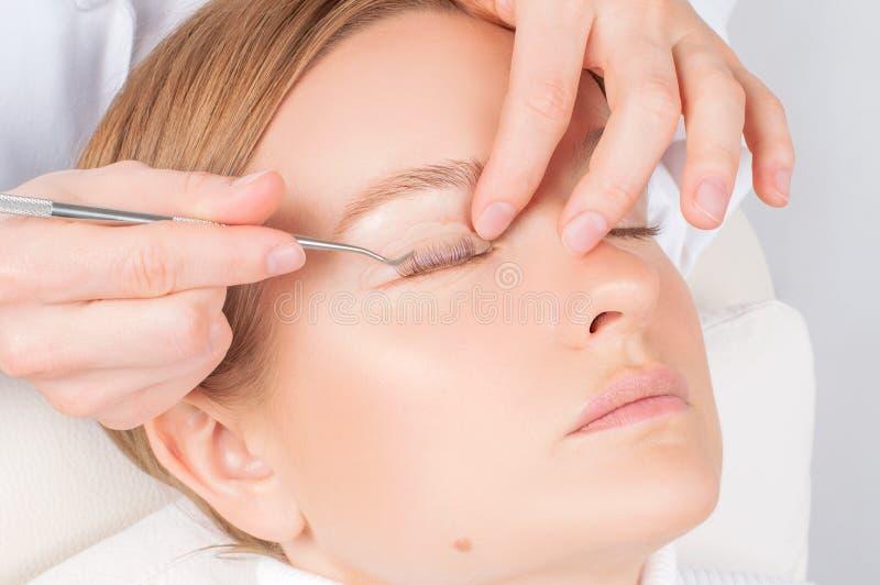 Donna che fa la laminazione, macchiatura, arricciatura, laminazione ed estensione dei cigli per le sferze fotografie stock