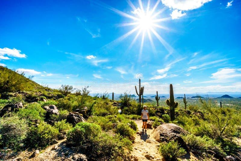Donna che fa un'escursione sotto il sole luminoso attraverso il paesaggio del deserto dei semi del parco regionale della montagna fotografie stock