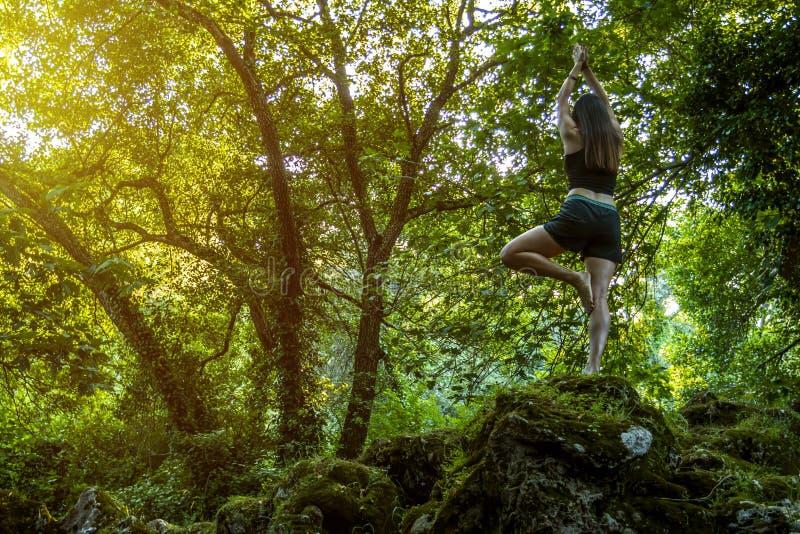 Donna che fa yoga in foresta fotografia stock libera da diritti