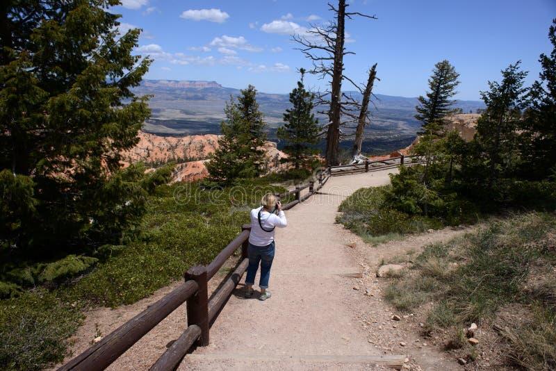 Donna che fotografa canyon fotografia stock