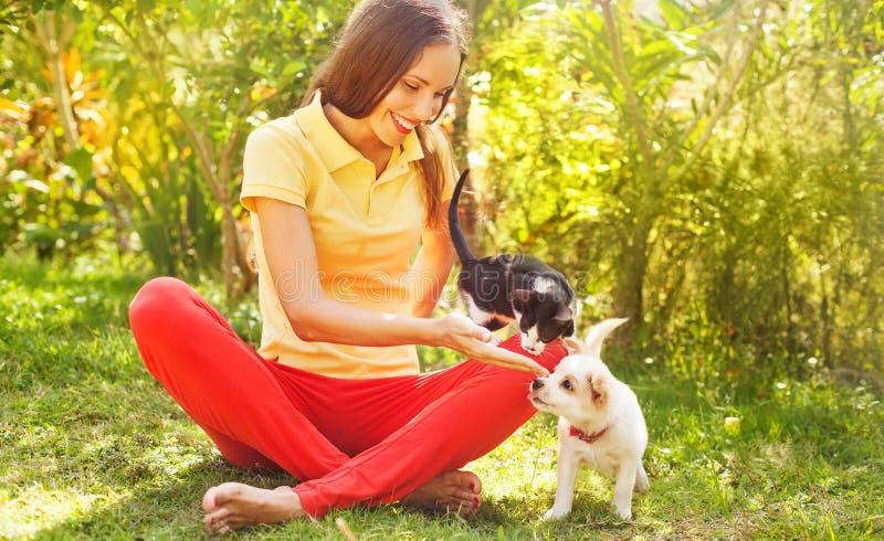 Donna che gioca con il suoi gatto e cane all'aperto immagine stock
