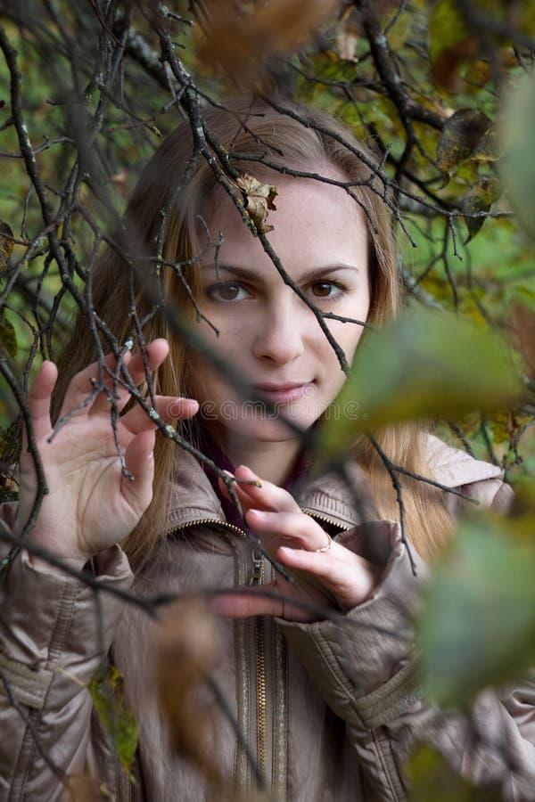Donna che guarda attraverso Autumn Branches fotografia stock