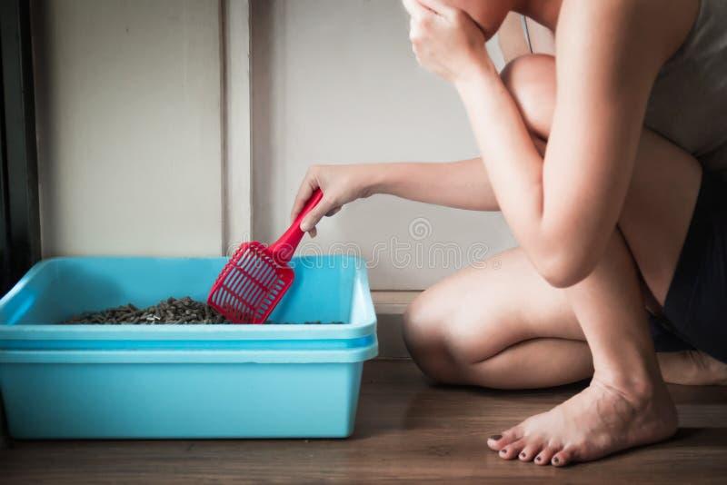 Donna che indossa una cinghia di spaghetti grigia che pulisce la piccola toilette blu del gatto o della scatola immagini stock libere da diritti