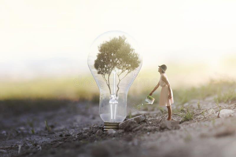 donna che innaffia la sua pianta che ha bisogno dell'energia ad una lampadina immagini stock