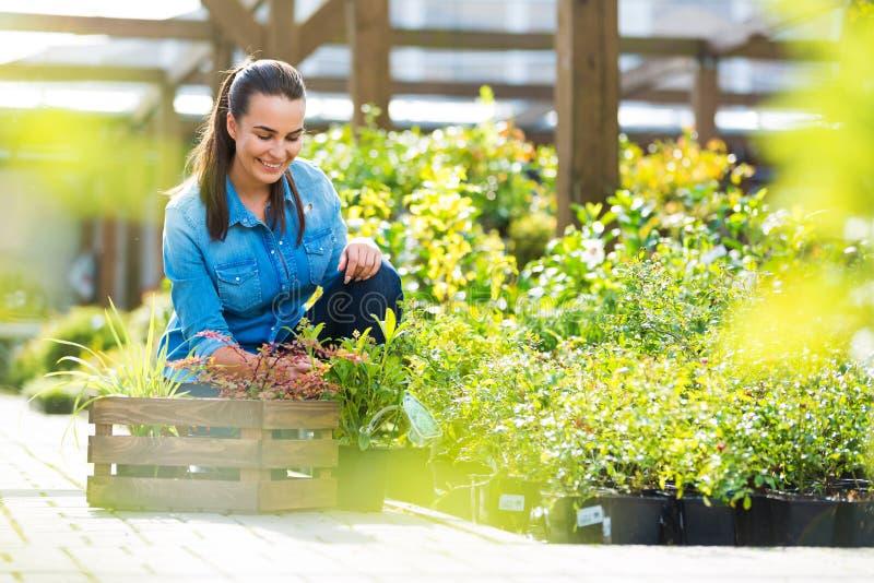 Donna che lavora nel Garden Center fotografia stock