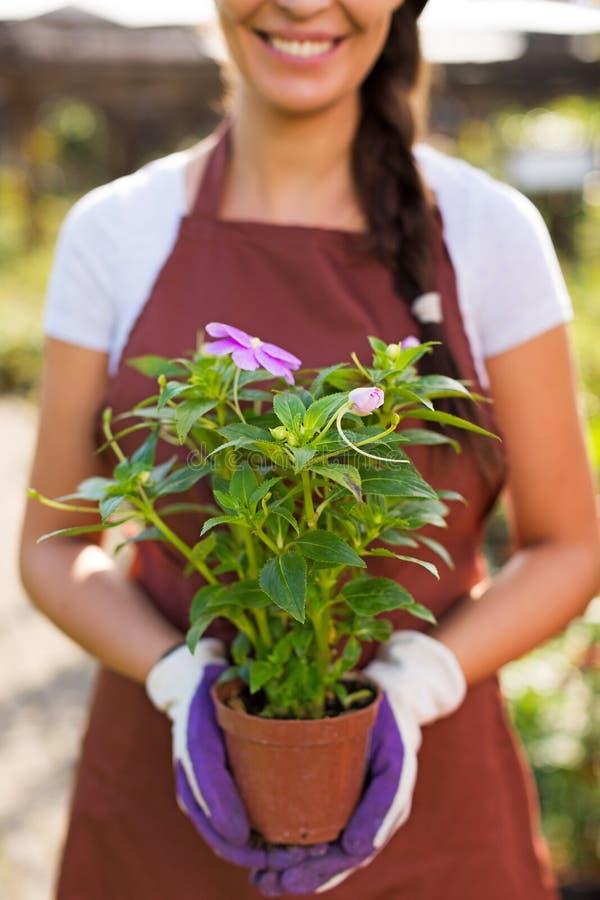 Donna che lavora nel Garden Center immagine stock libera da diritti