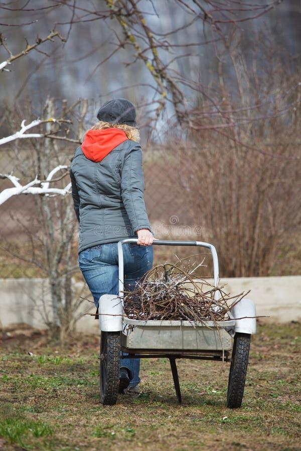 Donna che lavora nel giardino immagini stock libere da diritti