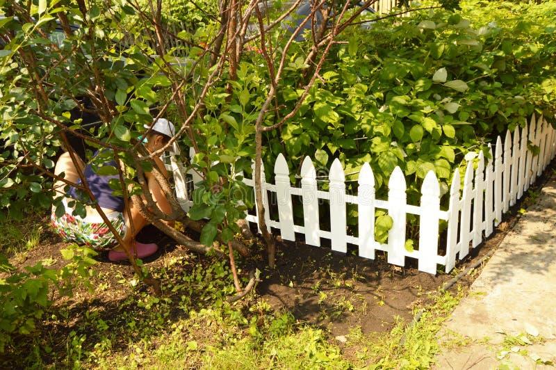 Donna che lavora nel giardino, occupante, la sua siluetta visibile attraverso gli alberi immagine stock