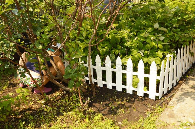 Donna che lavora nel giardino, occupante, la sua siluetta visibile attraverso gli alberi fotografia stock