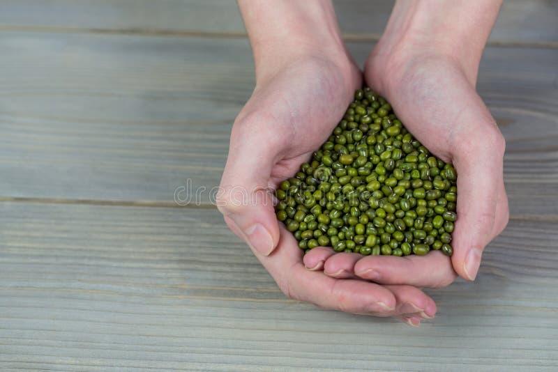 Donna che mostra manciata di lenticchie fotografia stock