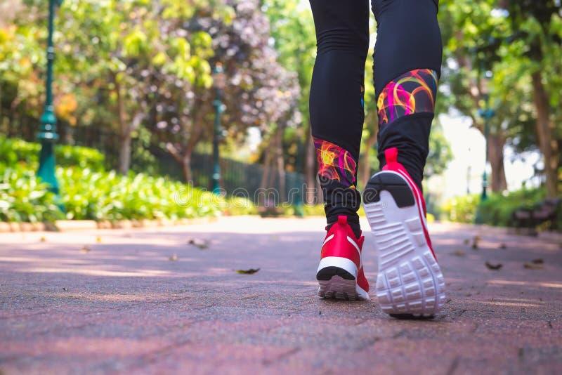 Donna che pareggia nel parco, vista dal basso, fuoco selettivo Stile di vita e benessere sani, sport e tema correre immagine stock