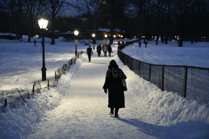 Donna che passeggia attraverso un parco nevoso alla notte fotografia stock libera da diritti
