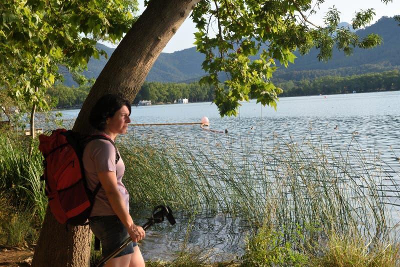 Donna che pende contro un albero e che guarda il tramonto immagini stock libere da diritti