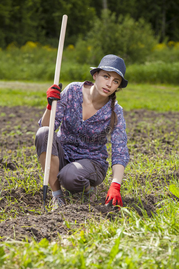 Donna che pianta i wegetables fotografia stock libera da diritti
