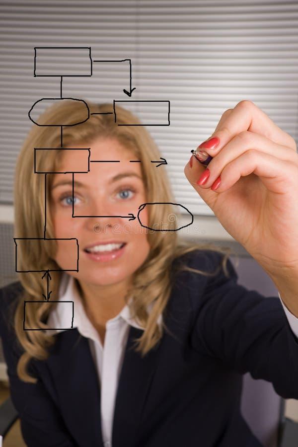 Donna che progetta un programma della base di dati su uno schermo fotografia stock libera da diritti
