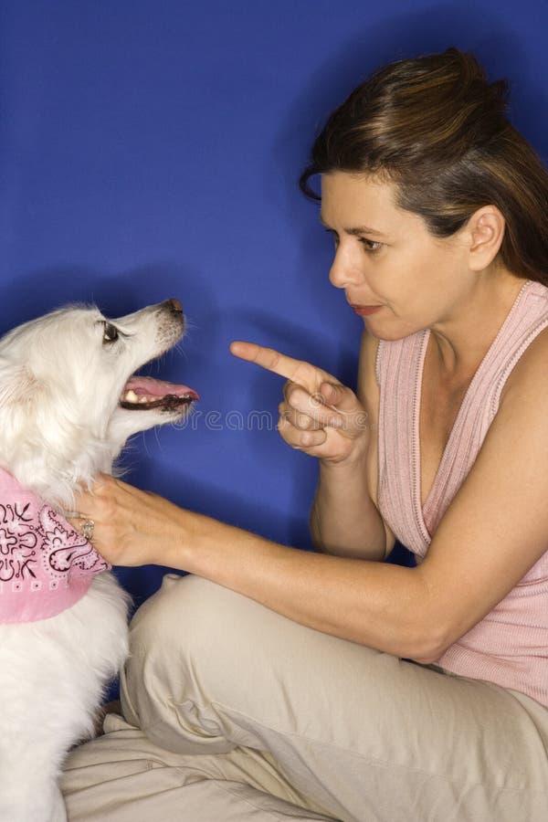 Donna che rimprovera cane bianco. immagine stock