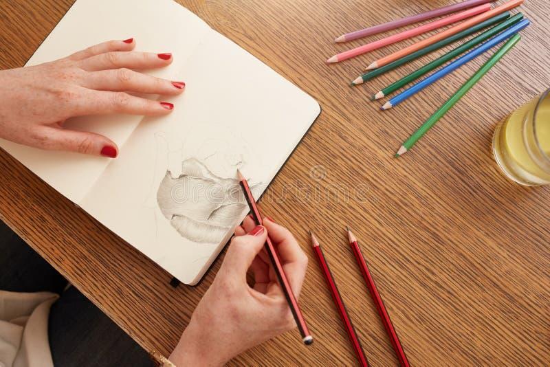 Donna che schizza un fiore nello sketchbook fotografia stock libera da diritti