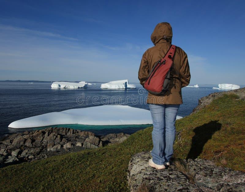 Donna che si leva in piedi sul puntello da Icebergs fotografie stock