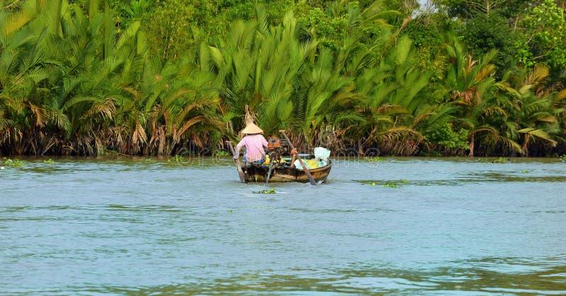 Donna che si muove in imbarcazione a remi, la media di trasporto più comune della gente rurale nel delta del Mekong immagine stock libera da diritti