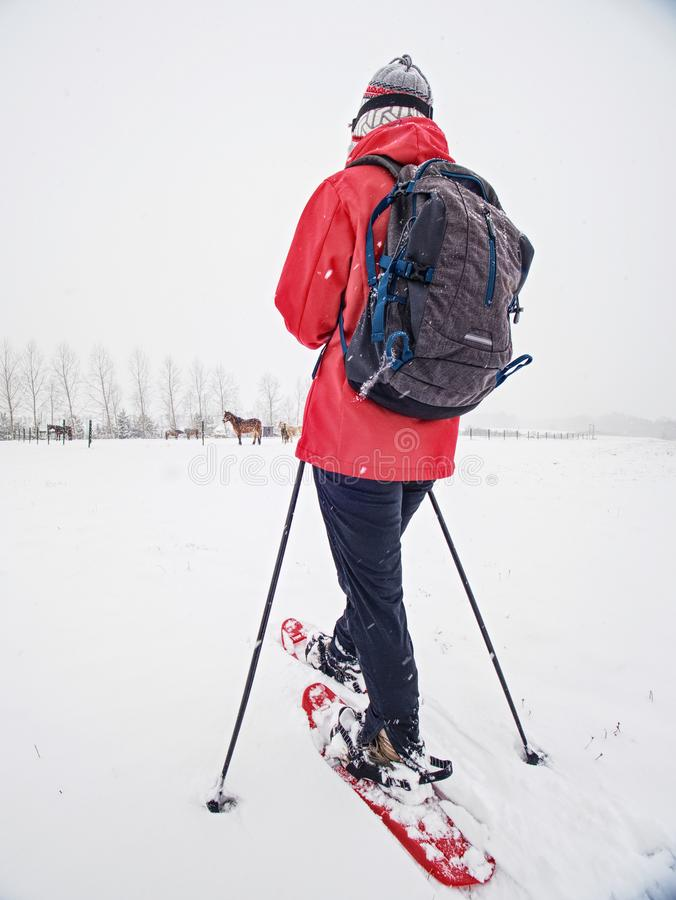 Donna che snowshoeing nella caduta della neve Nuvole grigio scuro fotografia stock