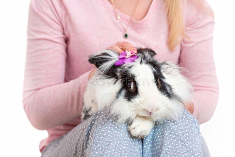 Donna che tiene coniglio lanuginoso sveglio Animali domestici adorabili immagini stock libere da diritti