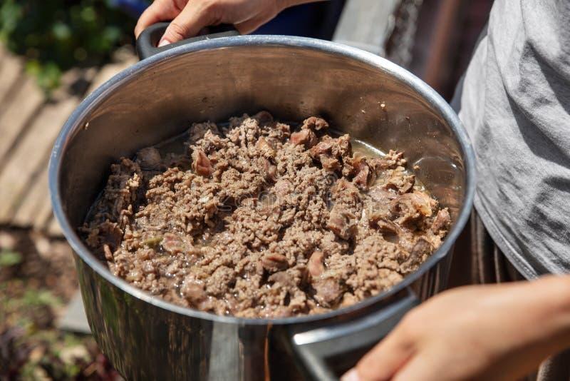 Donna che tiene un vaso del cane o cibo per gatti selfmade, carne e innard immagine stock