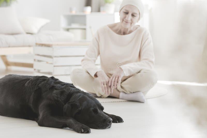 Donna con cancro ed il cane immagine stock