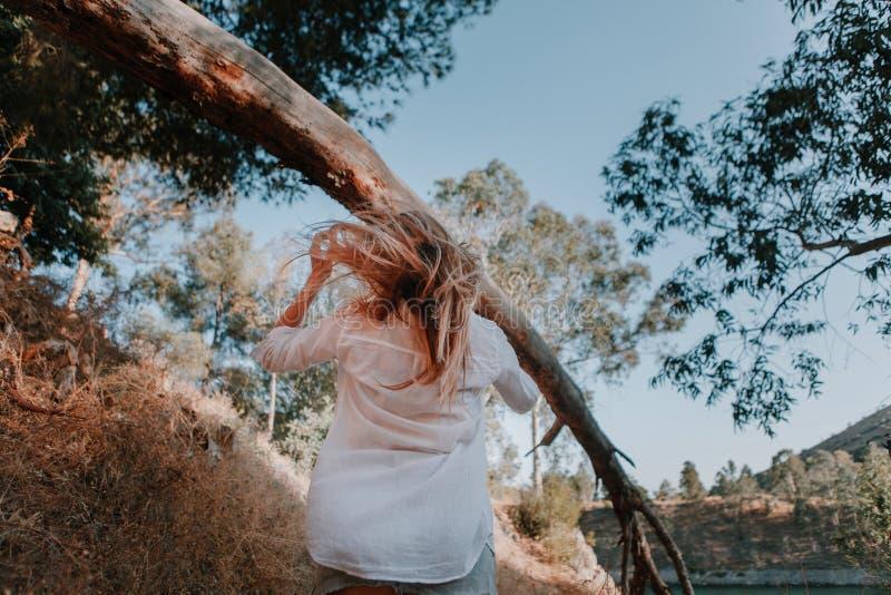 Donna con capelli ventosi che cammina sotto un albero caduto nella foresta immagine stock
