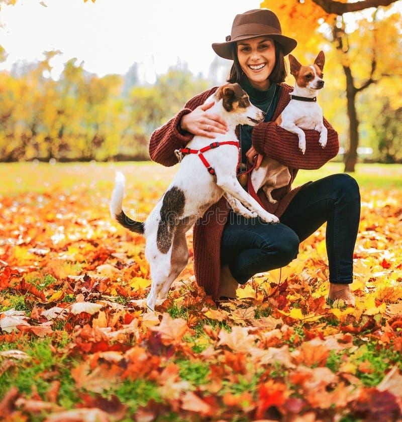 Donna con due cani che giocano fuori in foglie di autunno fotografia stock