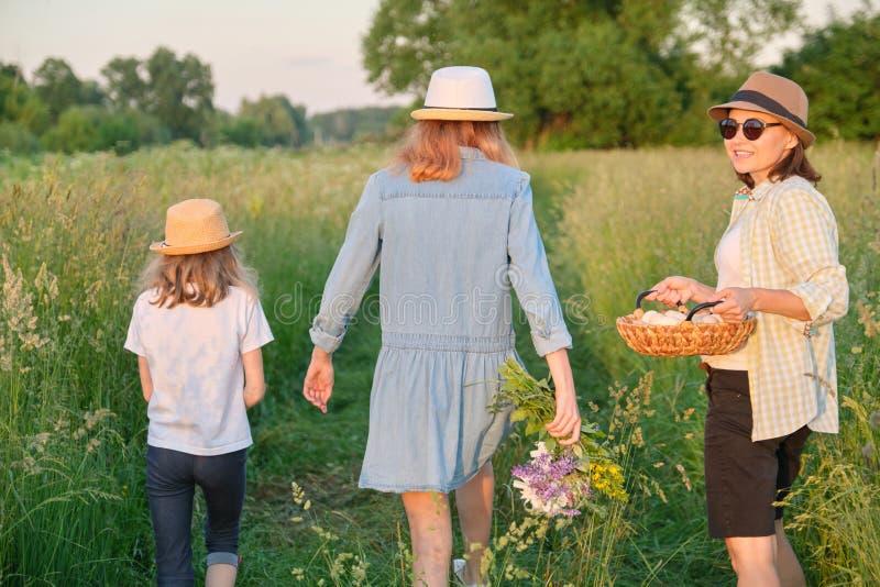 Donna con due figlie che camminano in un prato con un canestro delle uova, vista posteriore, ora dorata immagine stock