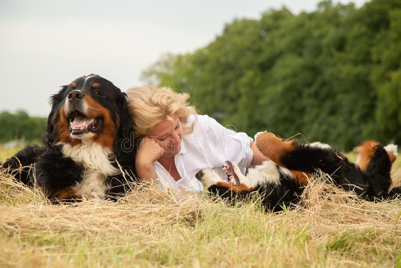 Donna con i cani fotografia stock