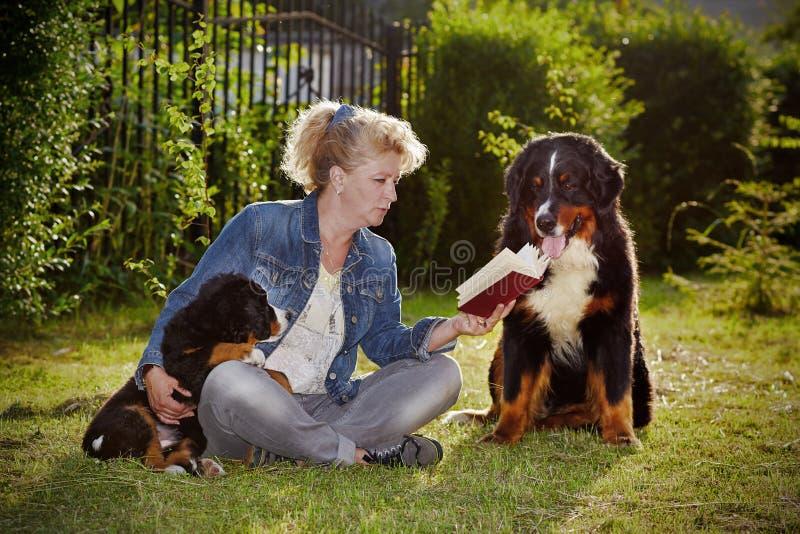 Donna con i cani immagine stock libera da diritti