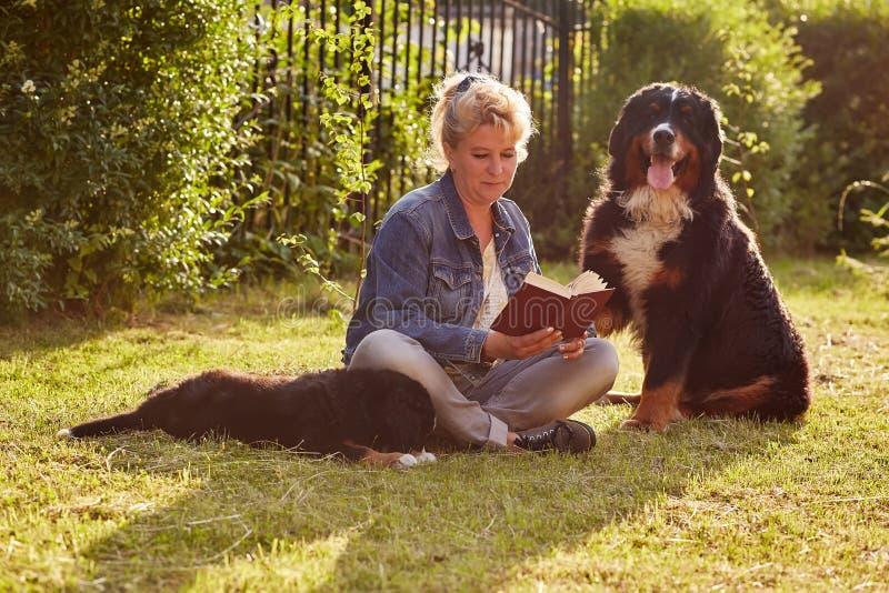 Donna con i cani fotografia stock libera da diritti