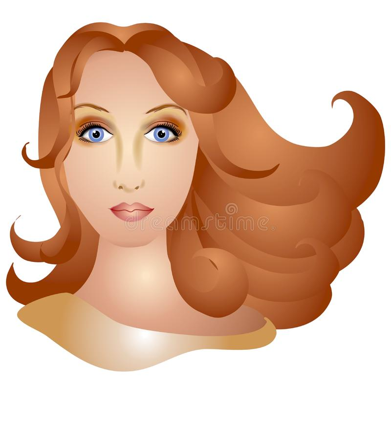 Donna con i capelli lunghi di Brown immagini stock