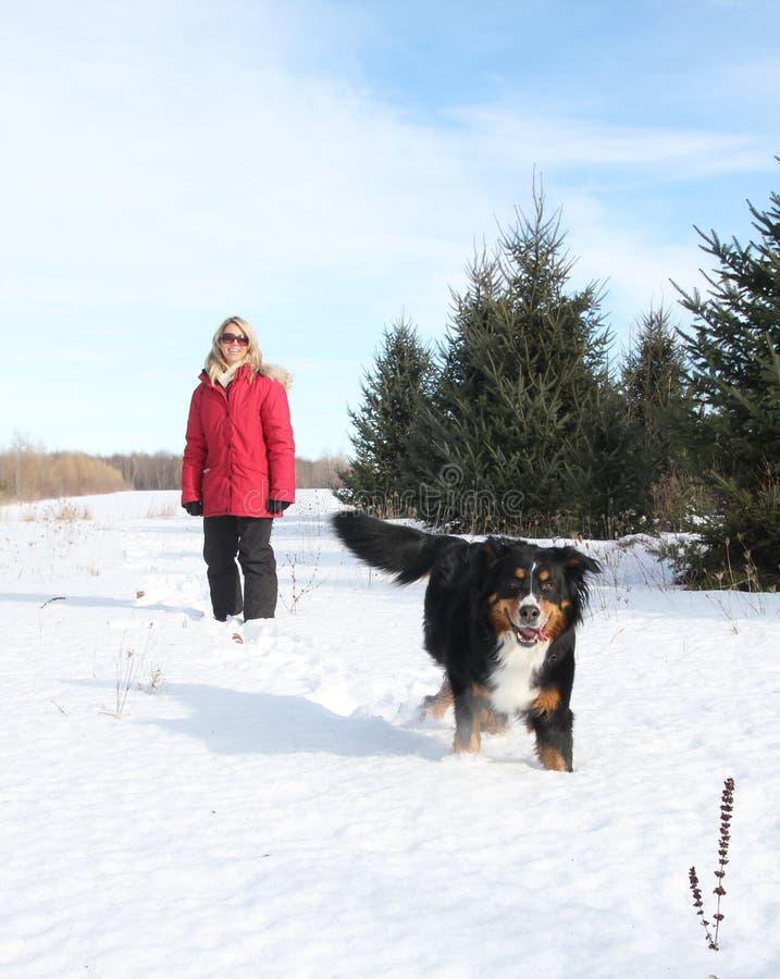Donna con il cane in neve fotografia stock libera da diritti