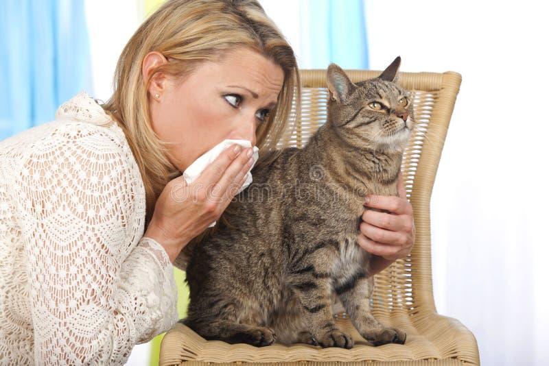 Donna con il gatto ed il fazzoletto fotografia stock