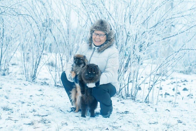 Donna con il pechinese del cane e gatto nel parco di inverno immagine stock