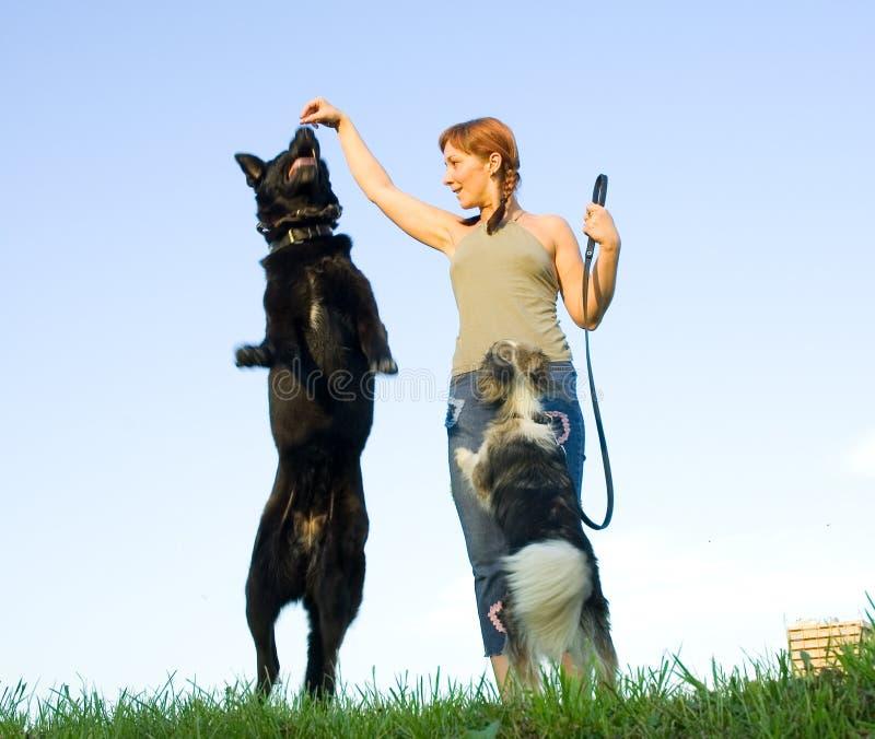 Download Donna con il suo cane immagine stock. Immagine di esterno - 19609789