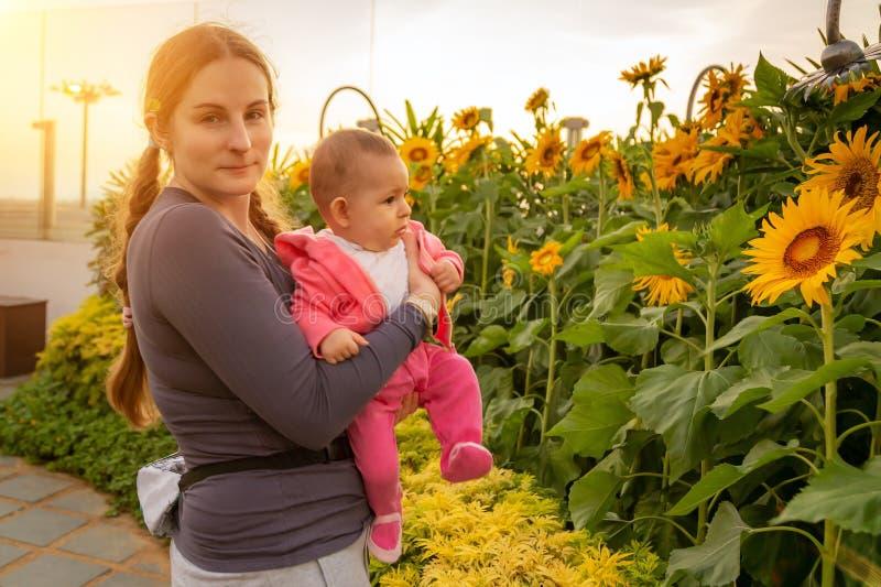 Donna con l'infante che gode dell'alba nel giardino dei girasoli Tenuta del bambino sulle mani immagini stock libere da diritti