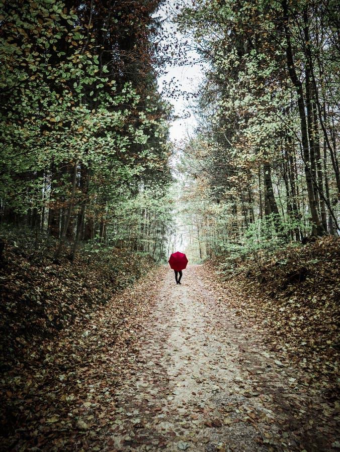 Donna con l'ombrello rosso che posa nel paesaggio di autunno fotografia stock