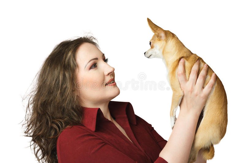 Donna con la chihuahua fotografia stock