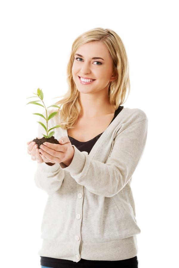 Donna con la pianta e la sporcizia a disposizione fotografia stock libera da diritti