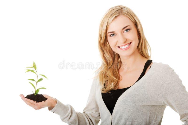 Donna con la pianta e la sporcizia a disposizione fotografia stock