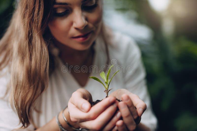 Donna con la plantula a disposizione immagini stock libere da diritti