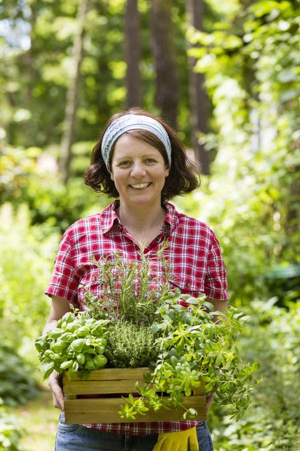 Donna con le erbe in un giardino fotografia stock libera da diritti