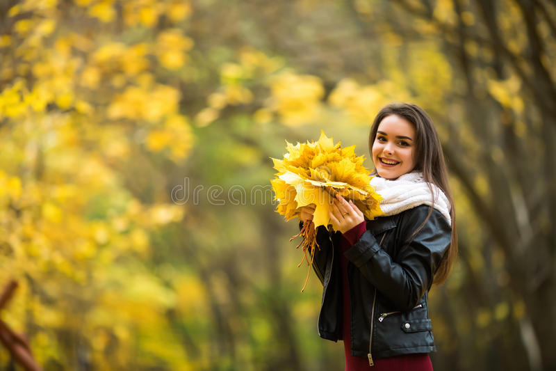 Donna con le foglie di autunno a disposizione ed il fondo giallo del giardino dell'acero di caduta fotografie stock