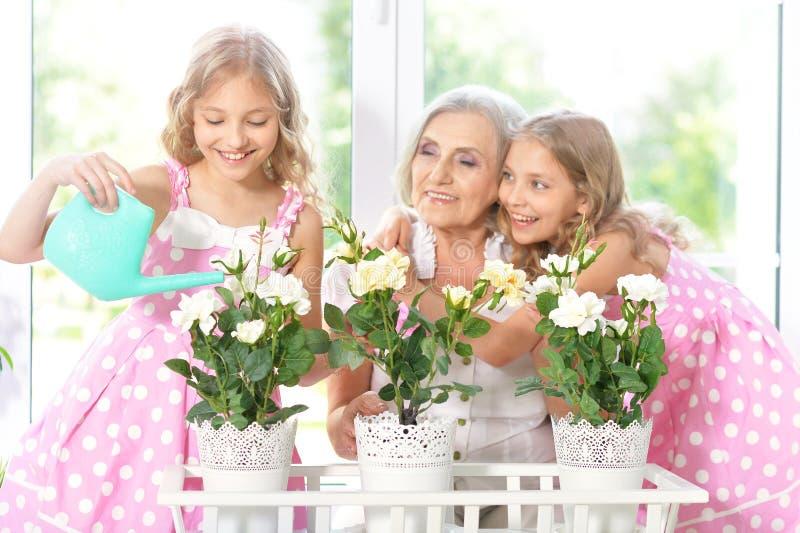 Donna con le ragazze del tweenie che innaffiano i fiori immagini stock